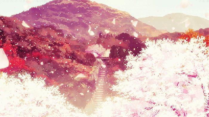 花瓣雨表情包 SOOGIF