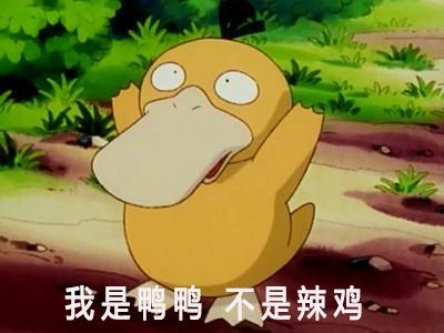 可达鸭   萌萌哒  我是鸭鸭 不是辣鸡 欢呼  雀跃