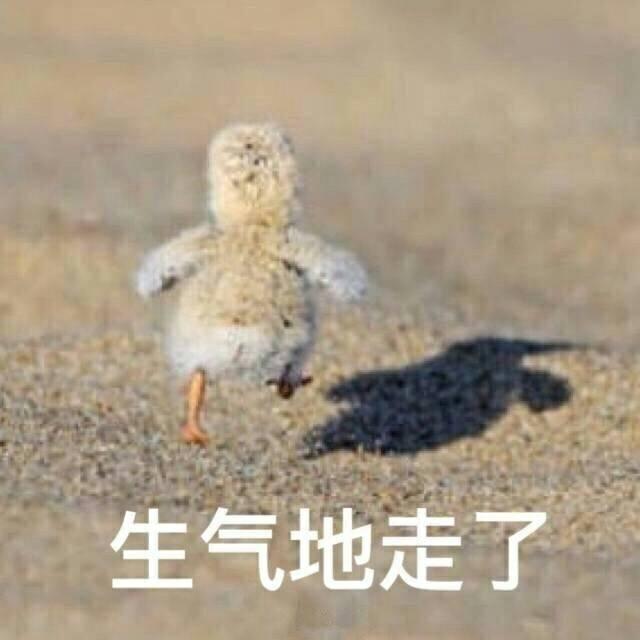 生气地走了 小鸭鸭 背影 可爱