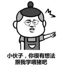 喂猪表情包_喂猪gif动图-soo图片