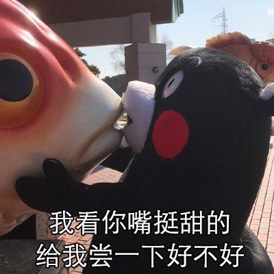 卡通 亲吻 熊本熊 看你嘴挺甜的 尝一下好不好
