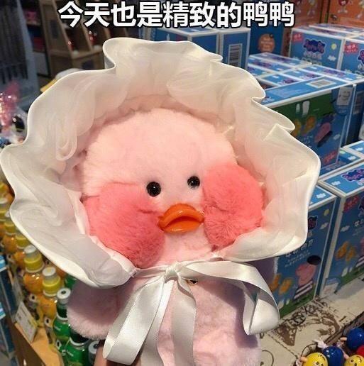 鹦鹉兄弟 玩偶 搞笑 可爱 呆萌 斗图 今天也是精致的鸭鸭
