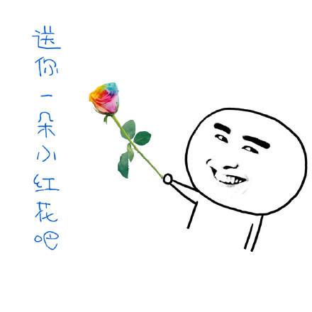 玫瑰花GIF表情图_玫瑰花图片_玫瑰花GIF动动态包v表情表情图片