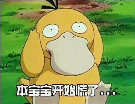 精灵宝可 可达鸭 可爱 呆萌 日本动画 本宝宝开始慌了