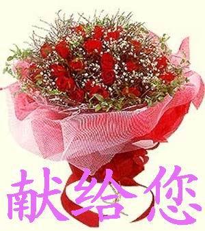 送你 鲜花 漂亮  玫瑰